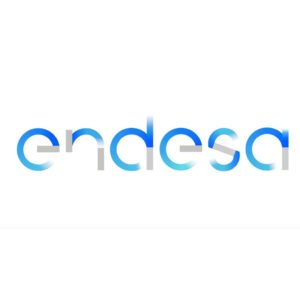 endesa-people first consulting
