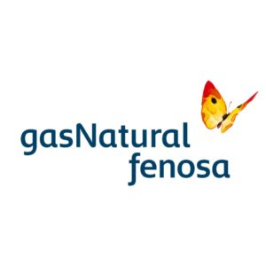 gas-natural-people first consulting