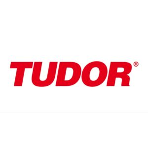 tudor-people first consulting